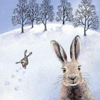 "Greetings card ""The Happy Hare"" 16x16cm"
