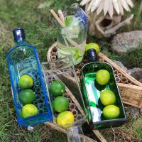 Dish/bowl recycled bottle, Bombay Sapphire (blue)