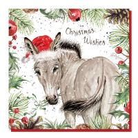 Christmas card, African wild donkey