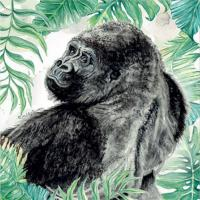 Greetings card, gorilla