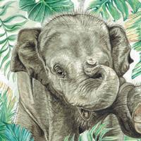 Greetings card, Asian elephant